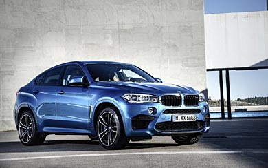 2016 BMW X6 M wallpaper thumbnail.