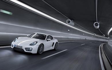 2014 Porsche Cayman wallpaper thumbnail.